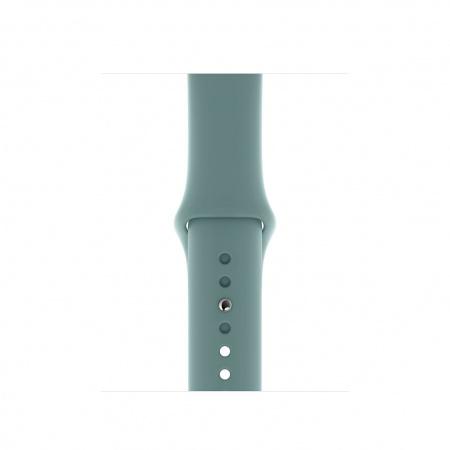Apple Watch 40mm Band:  Cactus Sport Band - Regular (Seasonal Spring2020)